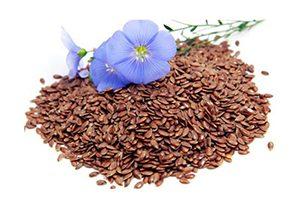 semillas-de-lino-o-linaza marrón con flor