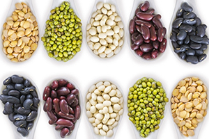 proteínas vegetales semillas