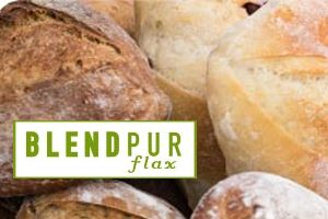 blendpur flax españa